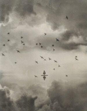 Platinum-Palladium print of a Christmas tree in the middle of a lake with a flock of birds and clouds and a perfect reflection.
