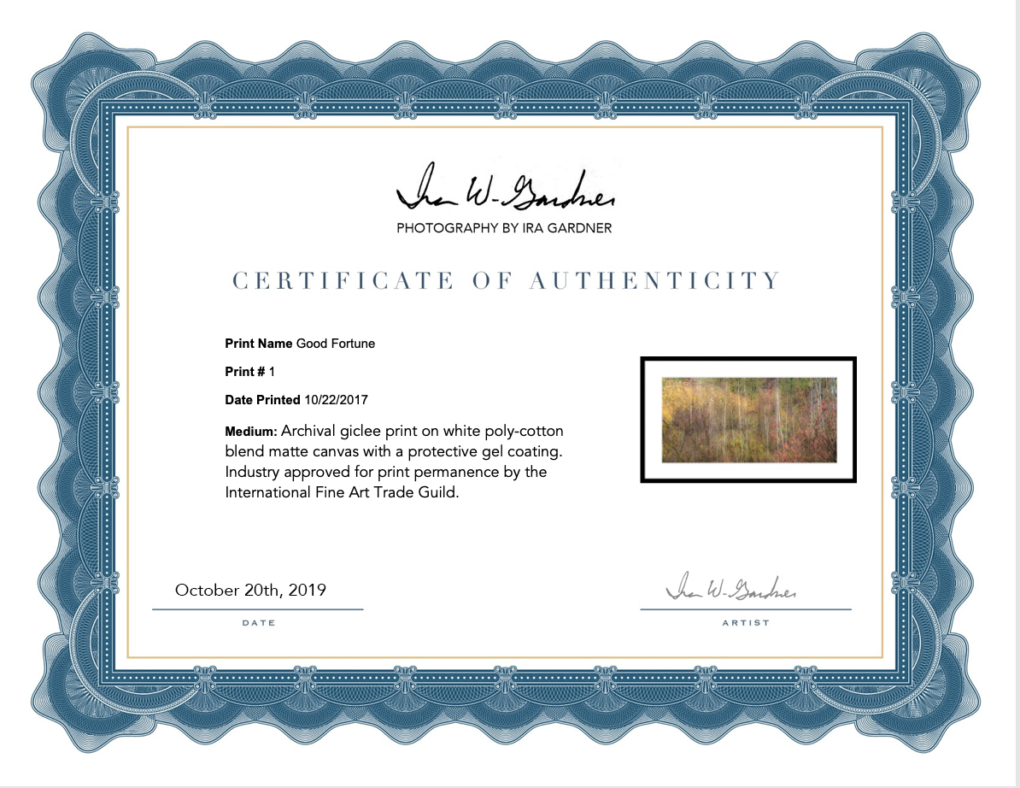 Image of a certificate of authenticity for my artwork that is used to provide insurance companies with information about your artwork.